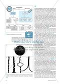 Basisartikel: Chromosomen und Gene Preview 3