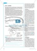 Insulin-Synthese: Vom Protein zum Gen zum Protein Preview 3