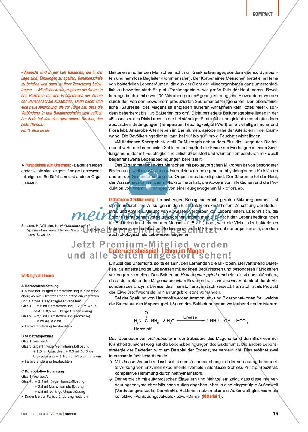 Alltagsvorstellungen zur Mikrobiologie - Zellen und Bakterien: Info-Text und Aufgaben Preview 1