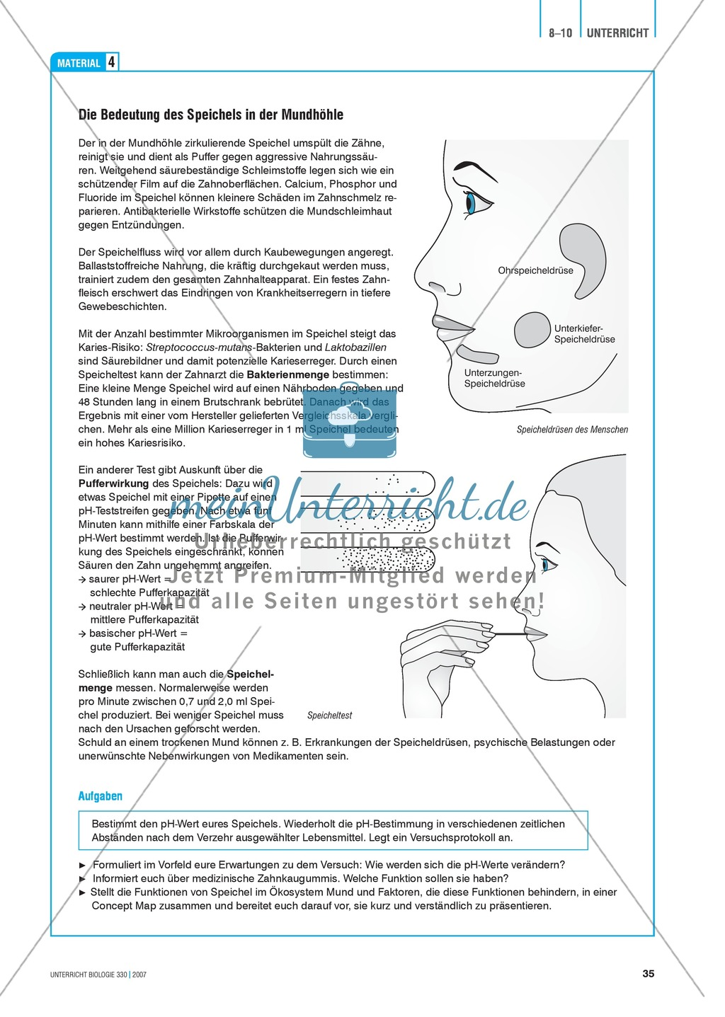 Gesundheit: Dentale Fitness - das Ökosystem Mundhöhle - Info-Text ...