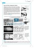 Bionik: Der Flossenstrahl-Effekt - Natur als Lösungsquelle für technische Innovation - Info-Text und Aufgaben Preview 2