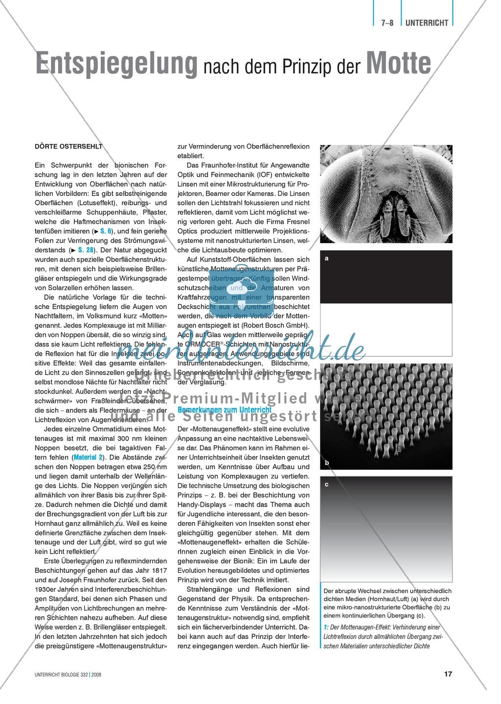 Bionik: Entspiegelung nach dem Prinzip der Motte - Info-Text und Aufgaben Preview 0