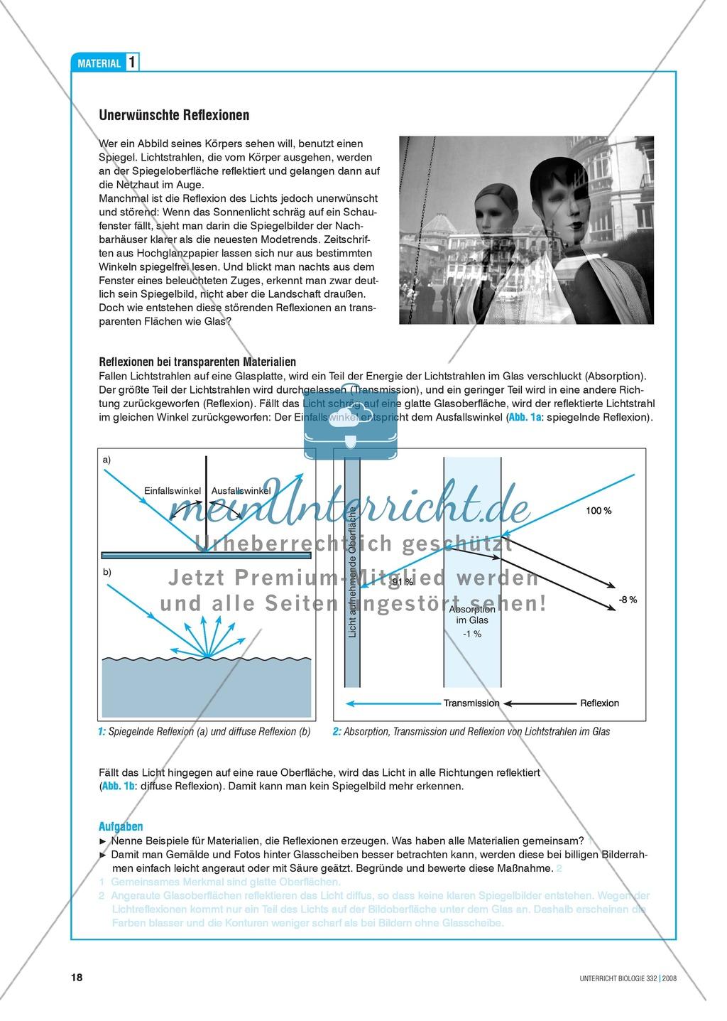 Bionik: Entspiegelung nach dem Prinzip der Motte - Info-Text und Aufgaben Preview 1