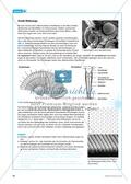 Bionik: Entspiegelung nach dem Prinzip der Motte - Info-Text und Aufgaben Preview 4