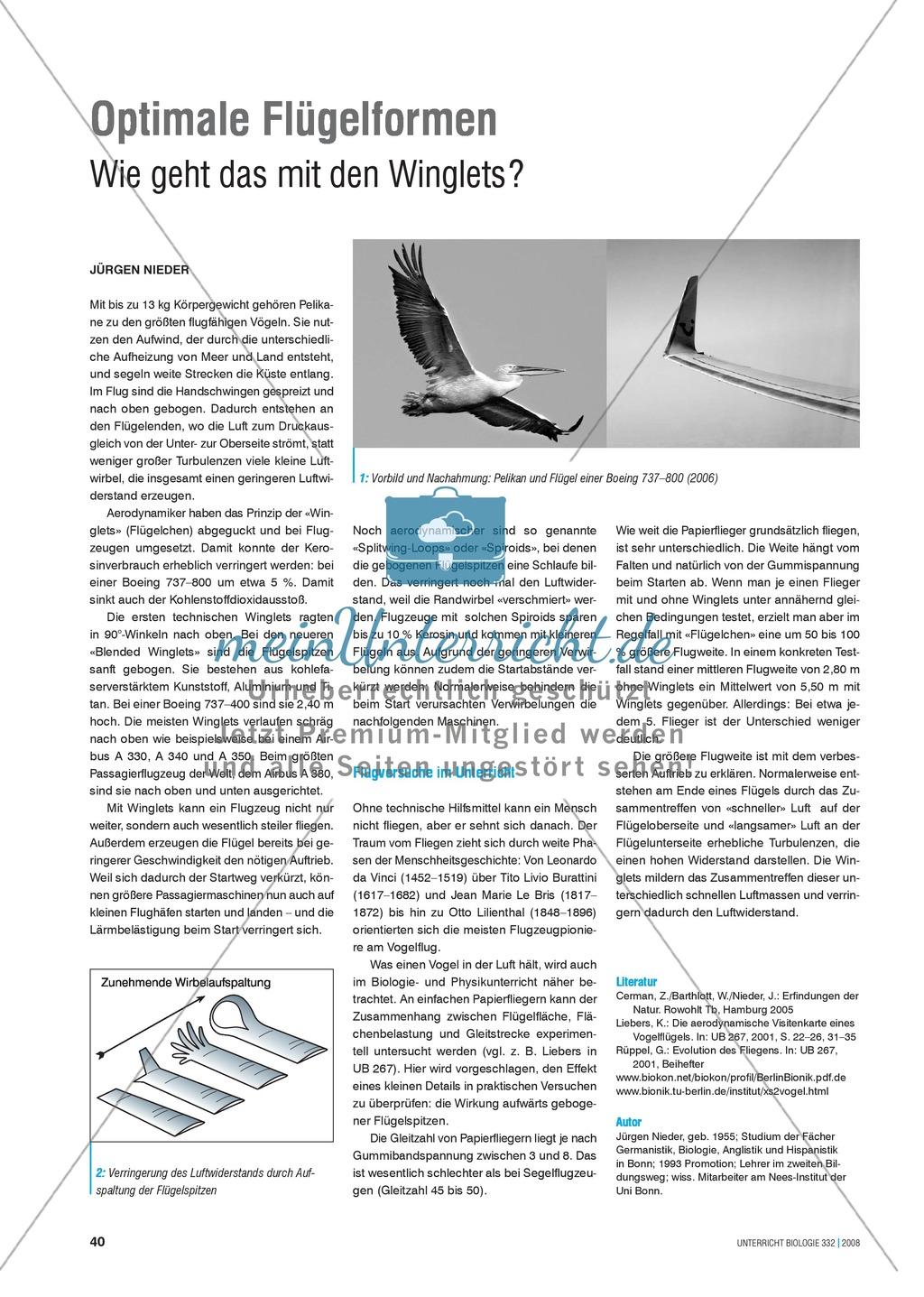 Bionik: Optimale Flügelformen - Wie geht das mit den Winglets? Info-Text und Aufgaben Preview 0