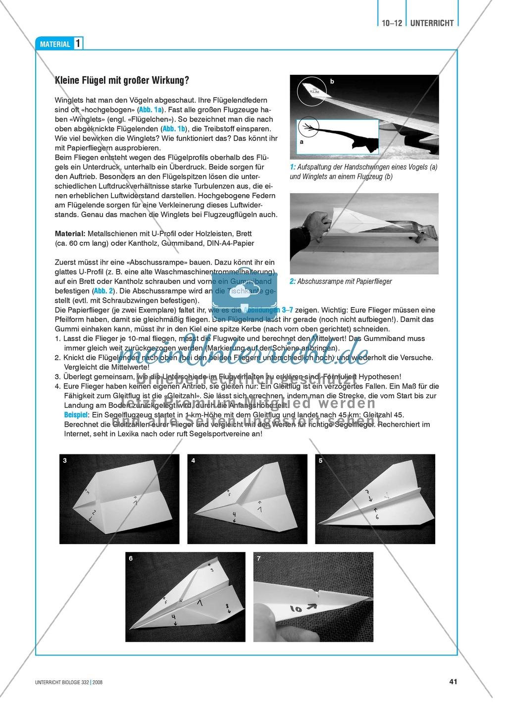 Bionik: Optimale Flügelformen - Wie geht das mit den Winglets? Info-Text und Aufgaben Preview 1