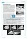 Bionik: Optimale Flügelformen - Wie geht das mit den Winglets? Info-Text und Aufgaben Thumbnail 1