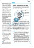 Krebse: Biosphere/Beachworld - Mini-Ökosysteme im Glas Preview 2