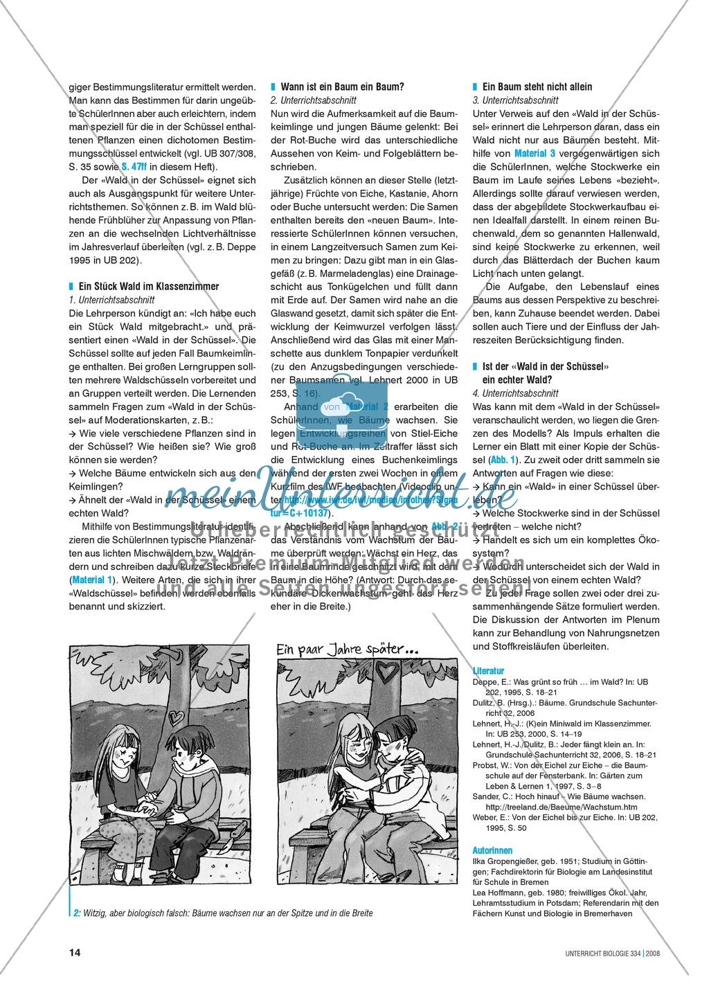 Der Wald in der Schüssel - Wachstum von Bäumen und die Stockwerke des Waldes - Info-Text und Aufgaben Preview 3