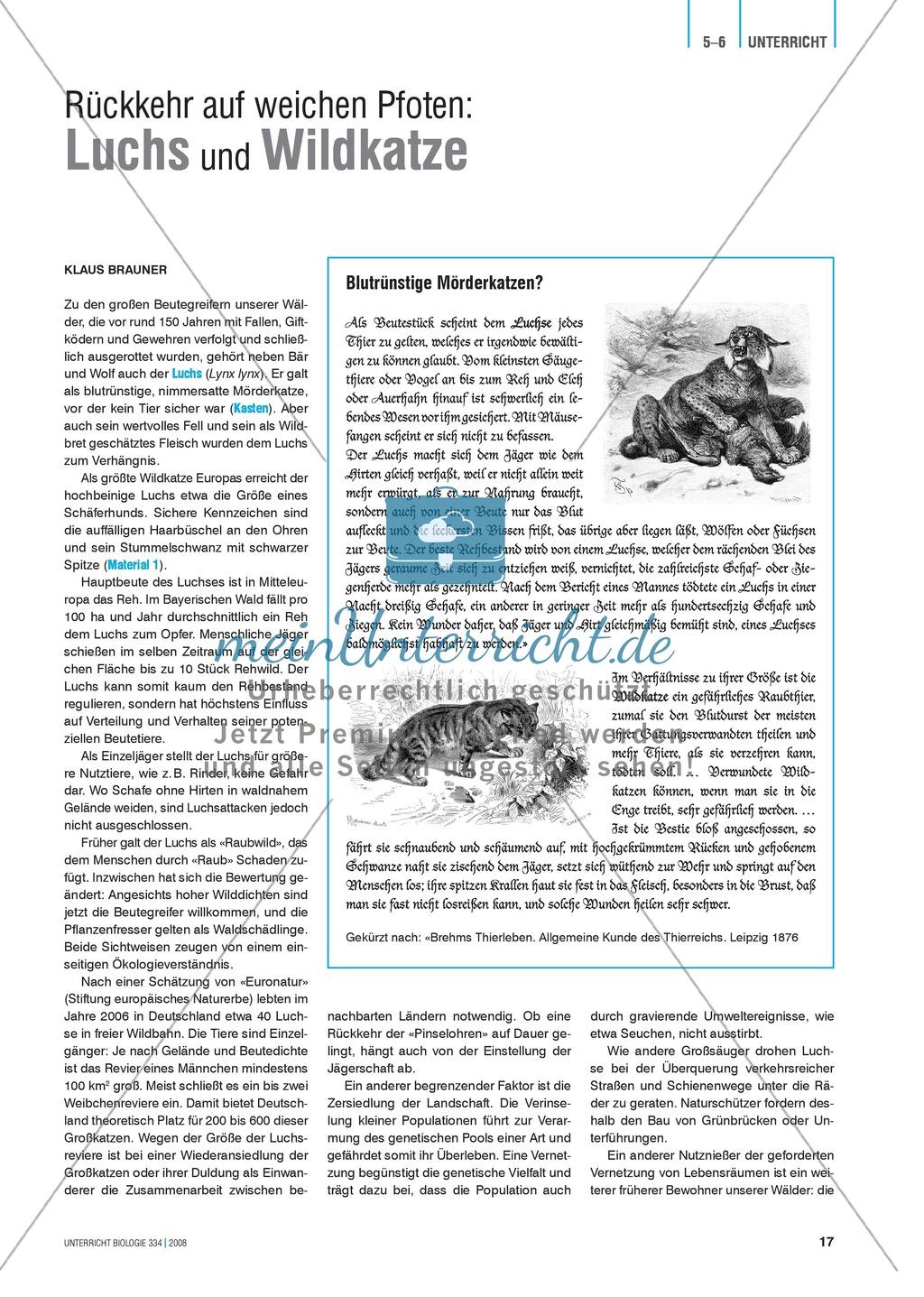Der Wald in der Schüssel - Wachstum von Bäumen und die Stockwerke des Waldes - Info-Text und Aufgaben Preview 6