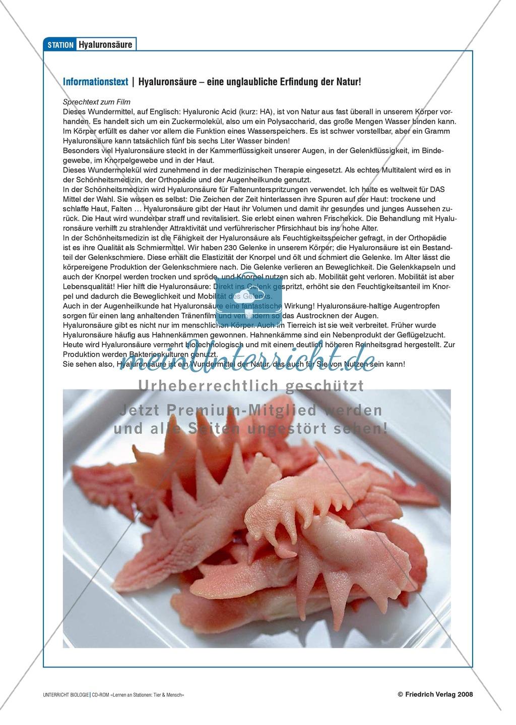 Tier und Mensch: Tierprodukte in Arzneimitteln Preview 12