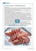 Tier und Mensch: Tierprodukte in Arzneimitteln Preview 13