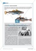 Tier und Mensch: Tierprodukte in Arzneimitteln Preview 21