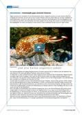 Tier und Mensch: Tierprodukte in Arzneimitteln Preview 5
