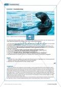Tier und Mensch: Räuberische Übergriffe - Populationsregulation der Seeotter vor den Aleuten Preview 10