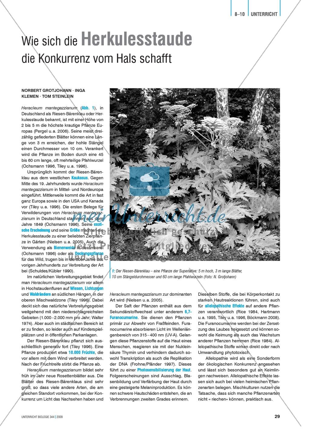 Neobiota: Die Anpassungs- und Verteidigungsmechanismen der Herkulesstaude erarbeiten und verstehen Preview 0