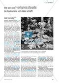 Biologie, Interaktion von Organismus und Umwelt, kompetenzorientiert, Ökologie, naturwissenschaftliche Denk- und Arbeitsweisen, Experiment, pflanzen