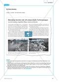 Neobiota: Die Anpassungs- und Verteidigungsmechanismen der Herkulesstaude erarbeiten und verstehen Preview 3