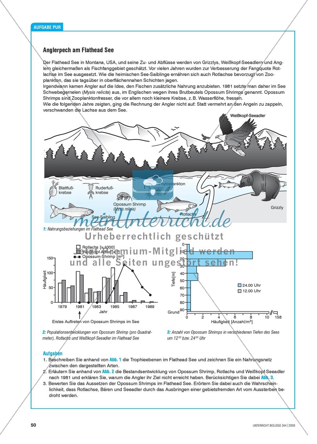 Nahrungsbeziehungen im Ökosystem See erarbeiten am Beispiel des Flathead Sees Preview 0