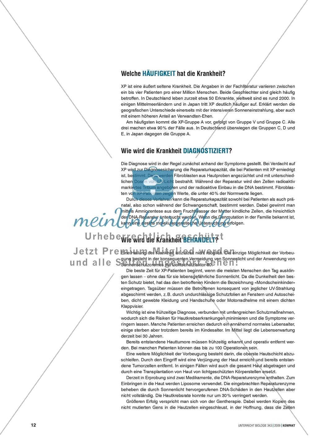 Genetik: Untersuchung der erblich bedingten Krankheit Xeroderma ...