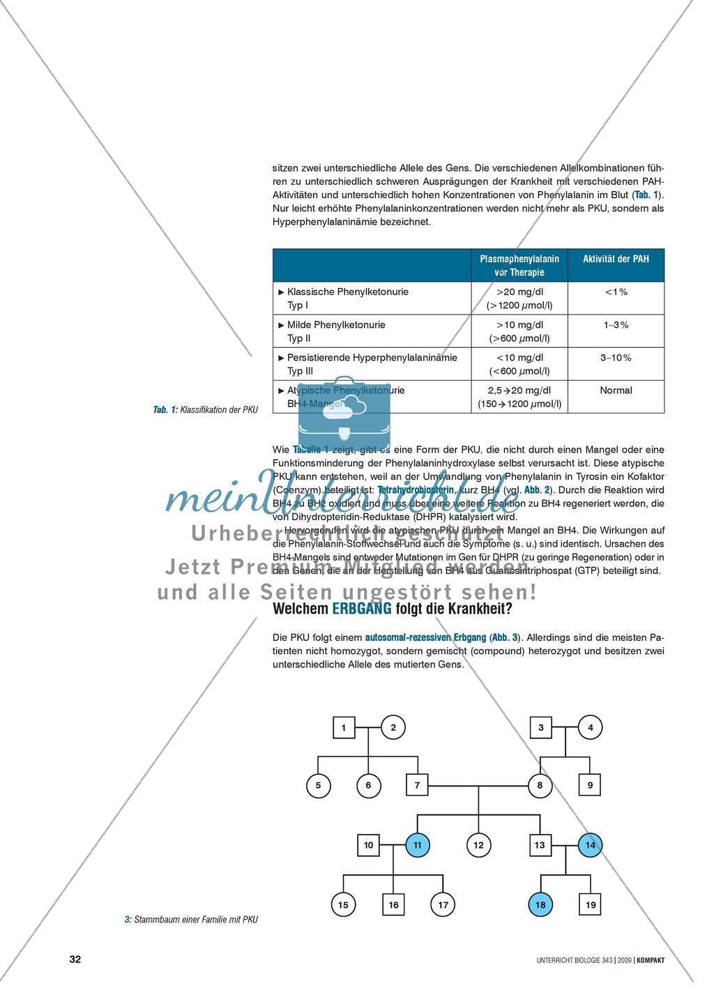 Genetik: Untersuchung erblich bedingter Erkrankungen der Leber am Beispiel der Phenylketonurie Preview 1