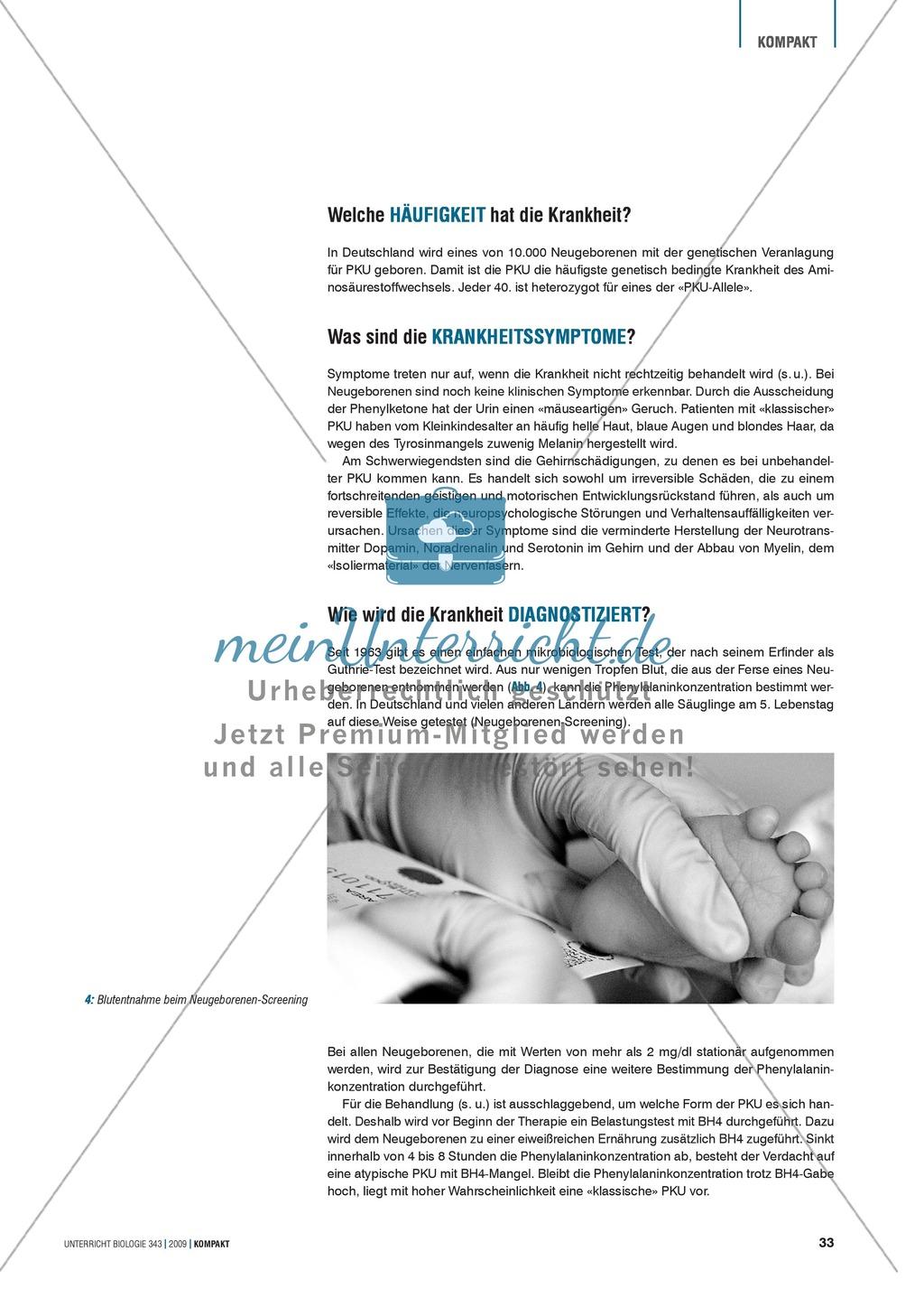 Genetik: Untersuchung erblich bedingter Erkrankungen der Leber am Beispiel der Phenylketonurie Preview 2