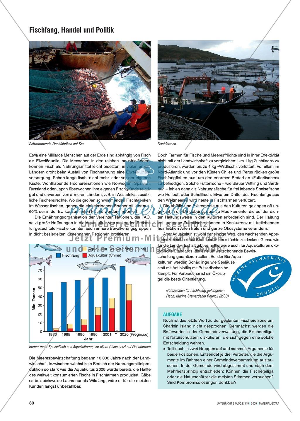 Stoff- und Energieflüsse in einem marinen Ökosystem entdecken und verstehen am Beispiel von Fischfang Preview 6
