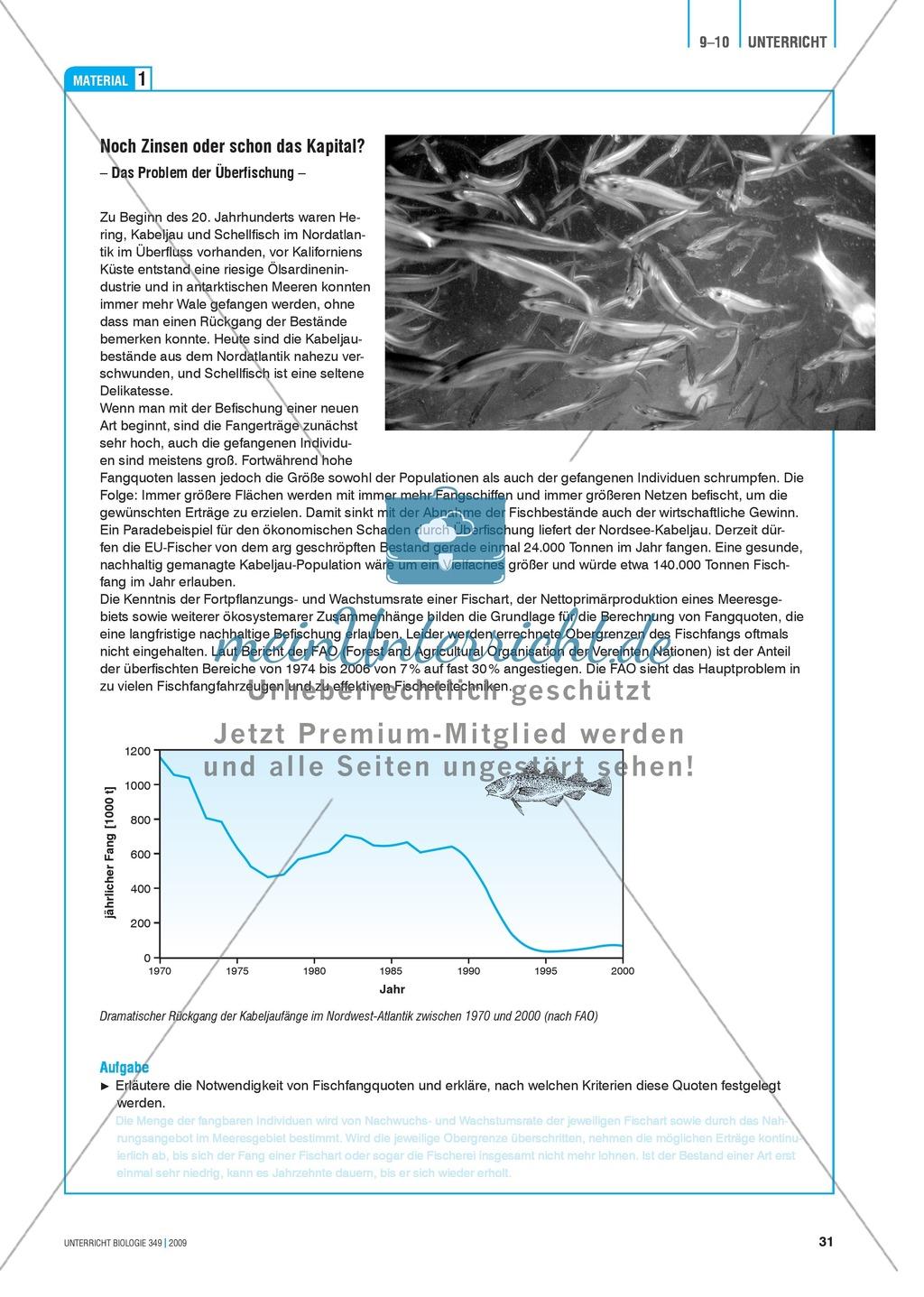 Stoff- und Energieflüsse in einem marinen Ökosystem entdecken und verstehen am Beispiel von Fischfang Preview 7