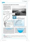 Das Ökosystem See durch Datenanalyse und