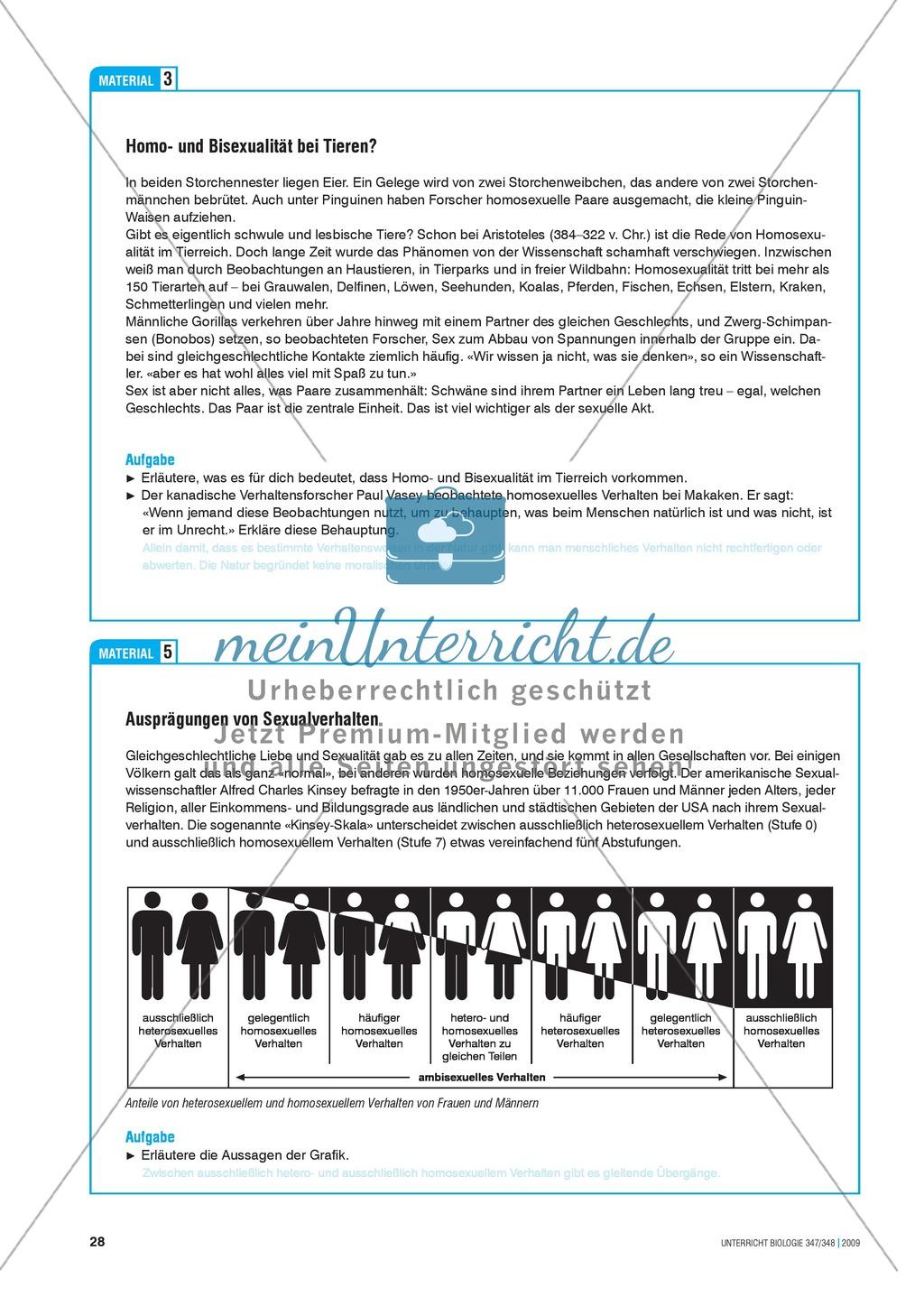 Awesome Grafik Anteile Arbeitsblatt Photos - Kindergarten ...