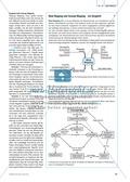 Concept-Mapping als Instrument zur Wissendiagnostik Preview 2