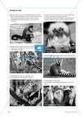 Lernen im Zoo: Hinweise zur Binnendifferenzierung mit Hilfe von PDAs und Keys Preview 2