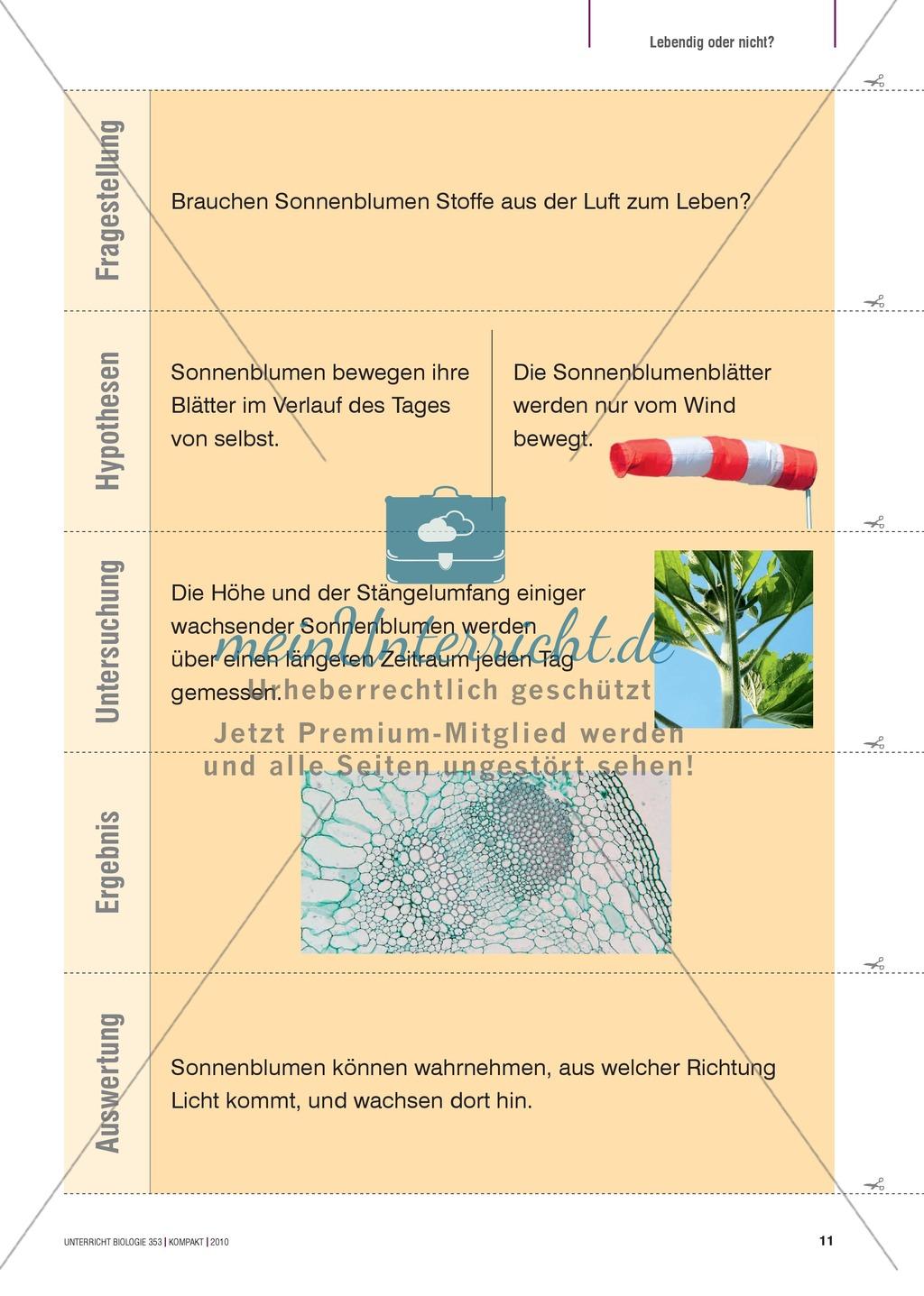 Kartenlegespiel zum naturwissenschaftlichen Forschen über die Eigenschaften verschiedener Lebewesen. Mit ausführlicher Anleitung Preview 9