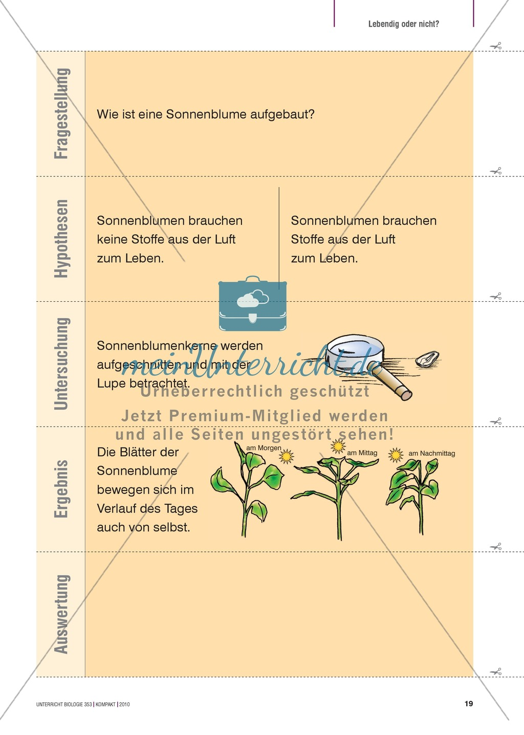 Kartenlegespiel zum naturwissenschaftlichen Forschen über die Eigenschaften verschiedener Lebewesen. Mit ausführlicher Anleitung Preview 17