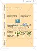 Kartenlegespiel zum naturwissenschaftlichen Forschen über die Eigenschaften verschiedener Lebewesen. Mit ausführlicher Anleitung Preview 18