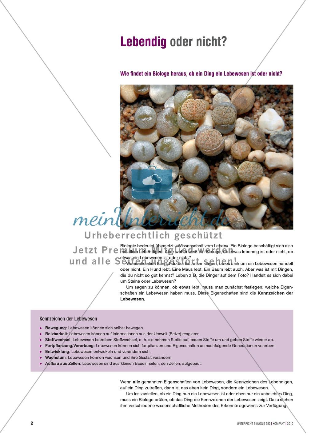 Kartenlegespiel zum naturwissenschaftlichen Forschen über die Eigenschaften verschiedener Lebewesen. Mit ausführlicher Anleitung Preview 0