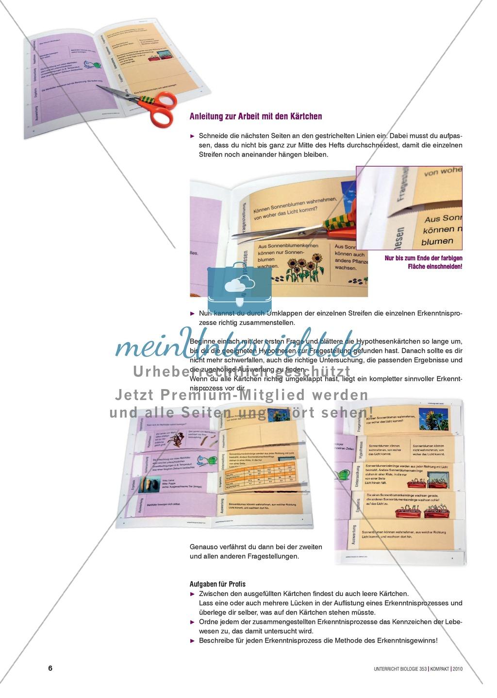 Kartenlegespiel zum naturwissenschaftlichen Forschen über die Eigenschaften verschiedener Lebewesen. Mit ausführlicher Anleitung Preview 4