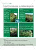 Das Ökosystem Moor: Hydrochemische Bedingungen verstehen und die Folgen einer Entwässerung abschätzen Preview 10