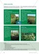 Das Ökosystem Moor: Hydrochemische Bedingungen verstehen und die Folgen einer Entwässerung abschätzen Thumbnail 9