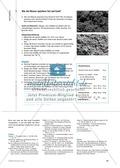 Das Ökosystem Moor: Hydrochemische Bedingungen verstehen und die Folgen einer Entwässerung abschätzen Preview 3