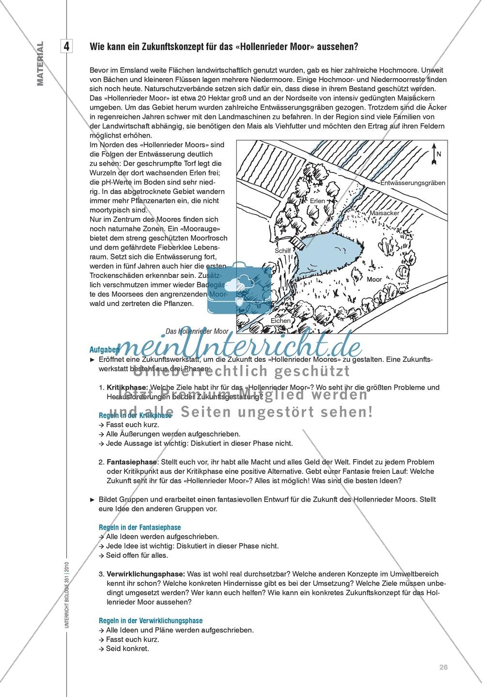 Das Ökosystem Moor: Hydrochemische Bedingungen verstehen und die Folgen einer Entwässerung abschätzen Preview 5
