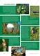 Das Ökosystem Moor: Hydrochemische Bedingungen verstehen und die Folgen einer Entwässerung abschätzen Thumbnail 7