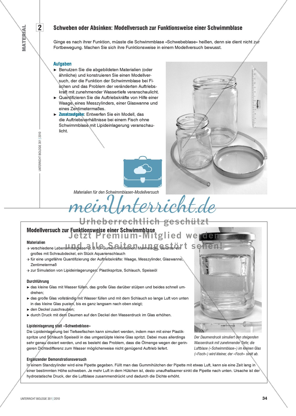 Die Funktionsweise der Schwimmblase im Modell erkunden und verstehen: Preview 3