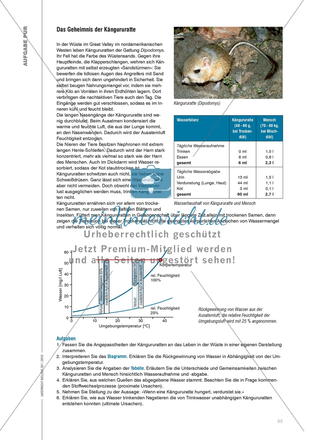 Aufgaben zu den Anpassungsmechanismen der Kängururatte - meinUnterricht