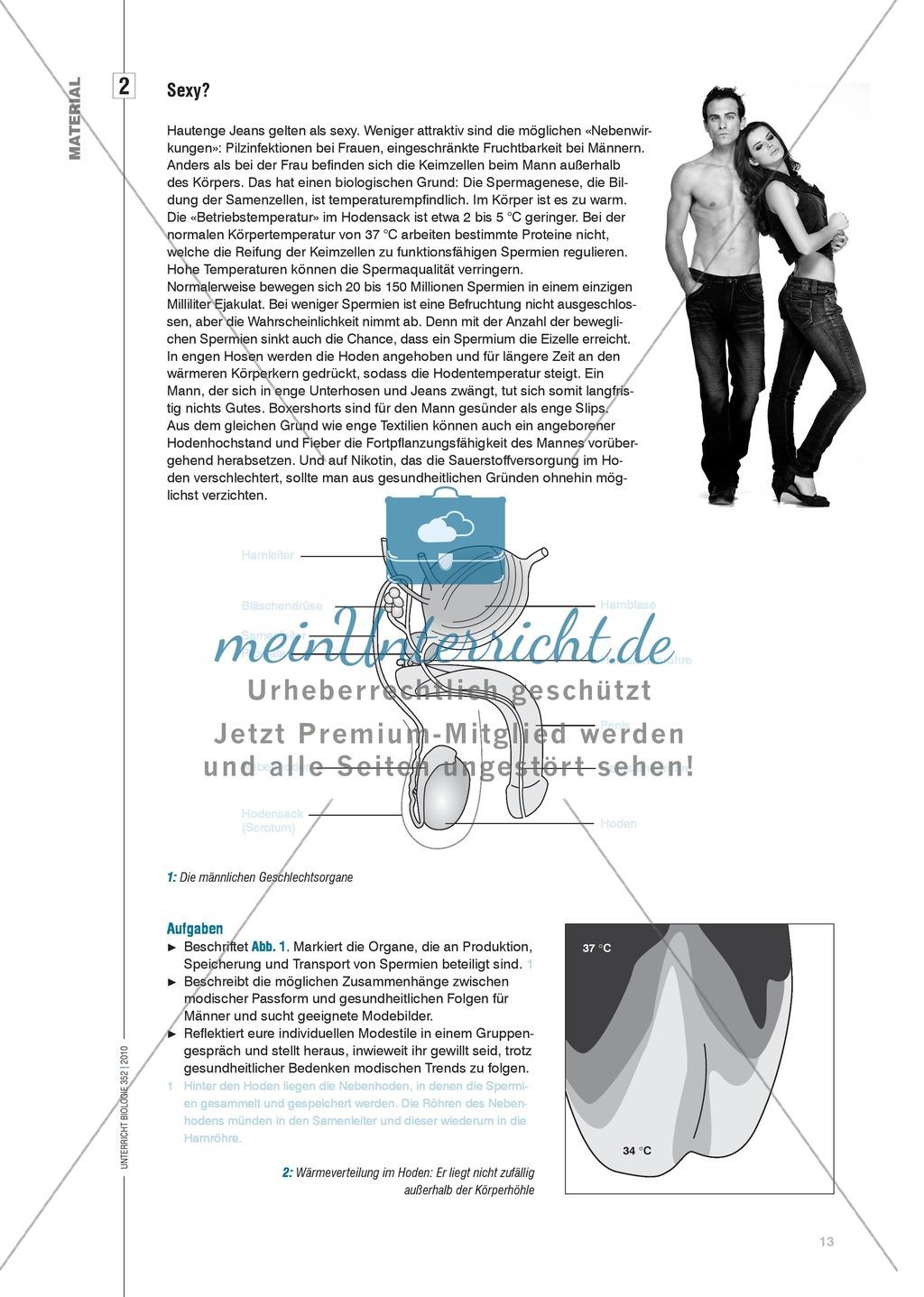Chronische Blasenentzündung als Folge falscher Bekleidung: Das Spannungsverhältnis zwischen Mode und funktionaler Kleidung diskutieren Preview 3