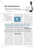 Der trinkende Storch - Experimentierserien als Ausgangspunkt für einen Unterricht über thermodynamischen Maschinen Preview 1
