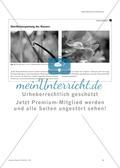 Kinder und Jugendliche fotografieren physikalische Phänomene - Der Schüler-Fotowettbewerb an der Ludwig-Maximilians-Universität München Preview 5