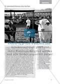 Industrialisierte Rindermast in den Great Plains - Ein Beitrag zur Entwicklung und Förderung der Lesekompetenz im Geographieunterricht Preview 8