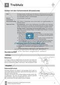 Brustschwimmen schrittweise lernen: Eine Unterrichtseinheit mit Teilübungen Preview 1