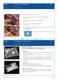 Versuche zum Thema Energie bei chemischen Reaktionen: Taschenwärmer, Streichholz Thumbnail 1